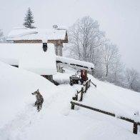 Primo tentativo invernale... Sentiero 818 - Parco Dolomiti Bellunesi