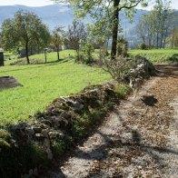 La mulattiera che parte dal Col dei Mich, sentiero 818 - Parco Dolomiti Bellunesi