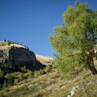 Verso Malga Le Prese - Parco Dolomiti Bellunesi