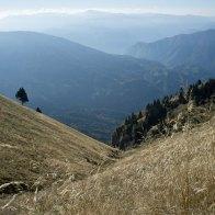 Risalendo la valle, verso la Vallazza - Parco Dolomiti Bellunesi