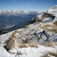 Guardando il panorama delle Pale di San Martino e del Monte Pavione a destra, dalla cima della Vallazza - Parco delle Dolomiti Bellunesi