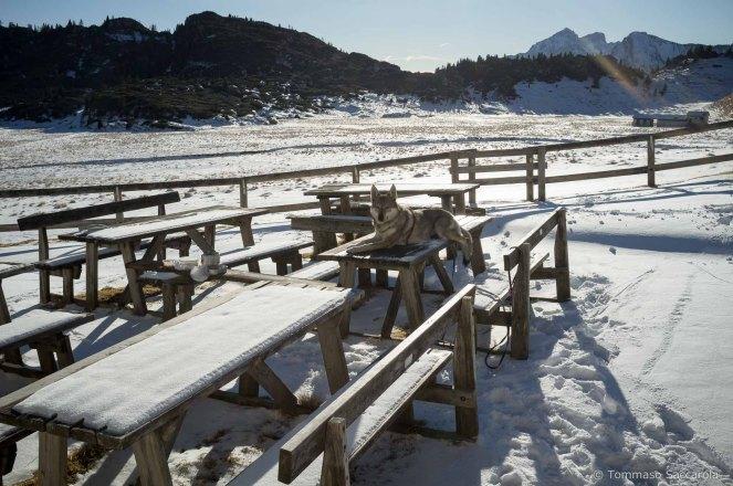 Sosta a Malga Erera Piani Eterni - Parco Nazionale Dolomiti Bellunesi