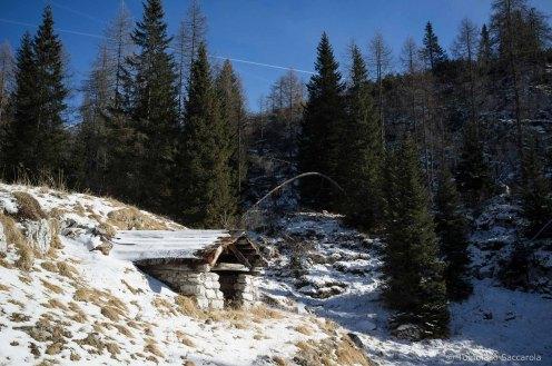Casera Pinea - Parco Nazionale Dolomiti Bellunesi