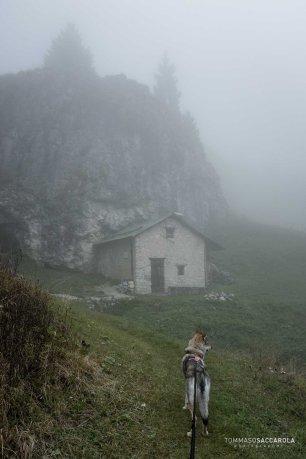 arrivo a Malga Ramezza Alta - Parco nazionale Dolomiti Bellunesi