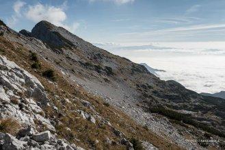 Sul sentiero 801 che percorre la Costa dell'Alpe Ramezza - Parco nazionale Dolomiti Bellunesi