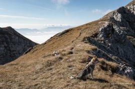 Sul sentiero 801 - Parco nazionale Dolomiti Bellunesi