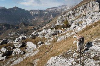 """Alla """"Piazza del Diavolo"""" prima della Busa di Pietena, sentiero 801 - Alta via delle Dolomiti n° 2 - Parco nazionale Dolomiti Bellunesi"""