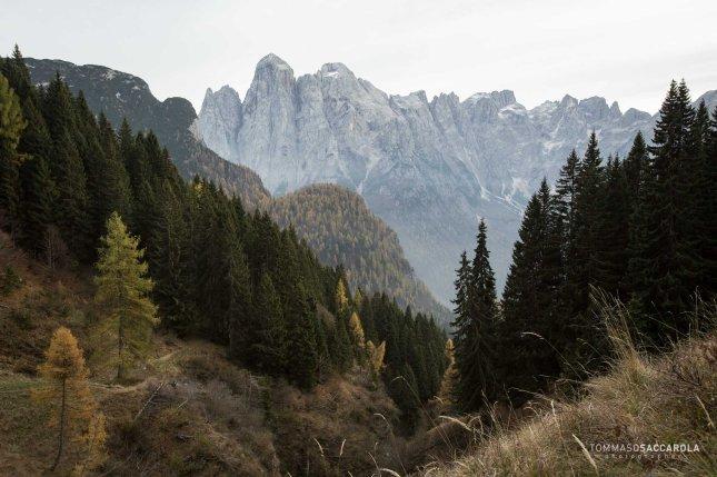 Salendo dalla Baita Malgonera verso casera ai Doff: lo spigolo Nord del monte Agner e cime circostanti che si vedono dal sentiero 762