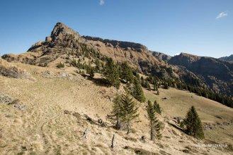 Forcella e Monte Caòz sulla sinistra, in basso a destra la casera ai Doff